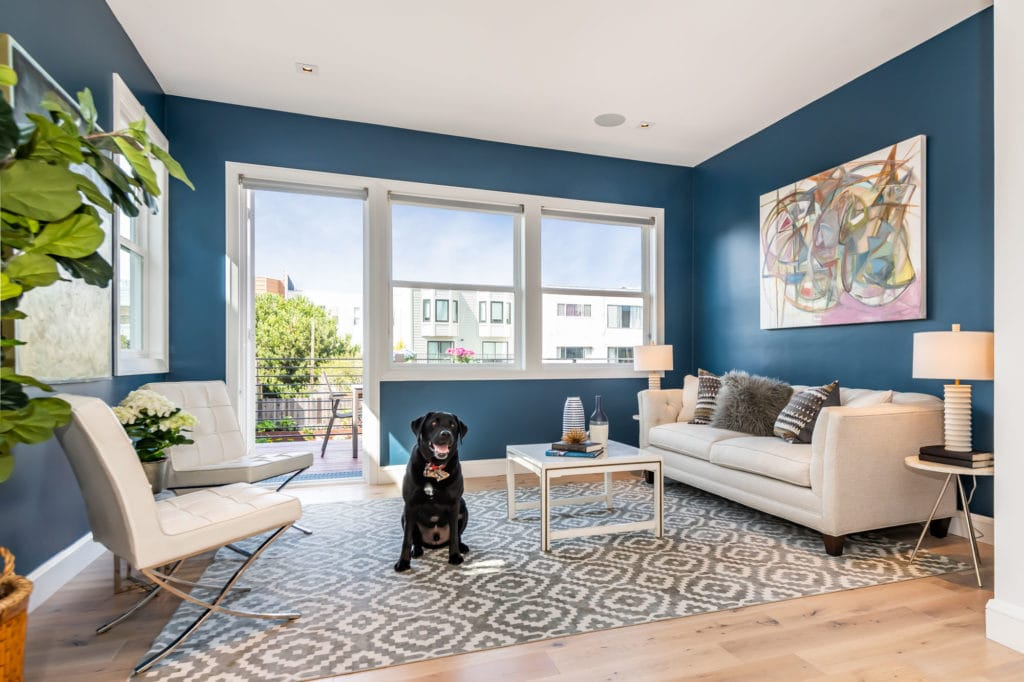 5.-475-22nd-Ave-TV-Room-with-Raffi-1024x682